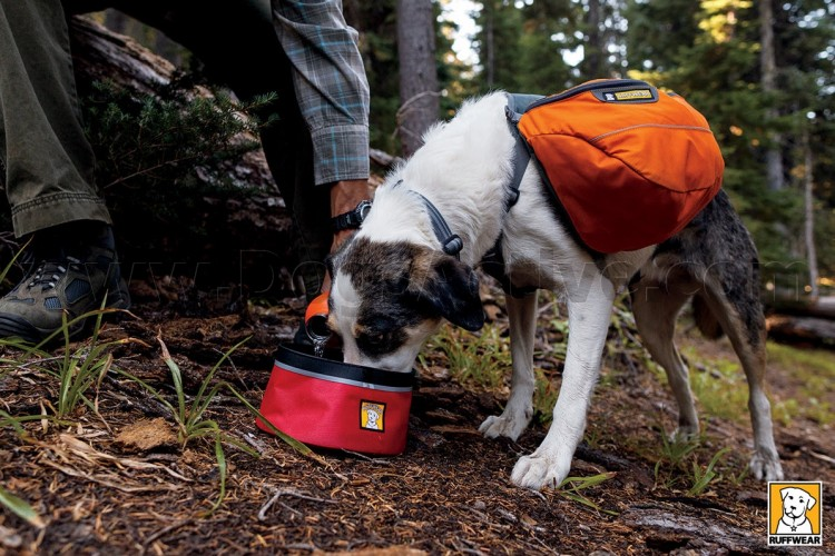 Рюкзак для собак RUFFWEAR® Approach Pack™