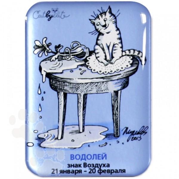 Кот водолей картинка