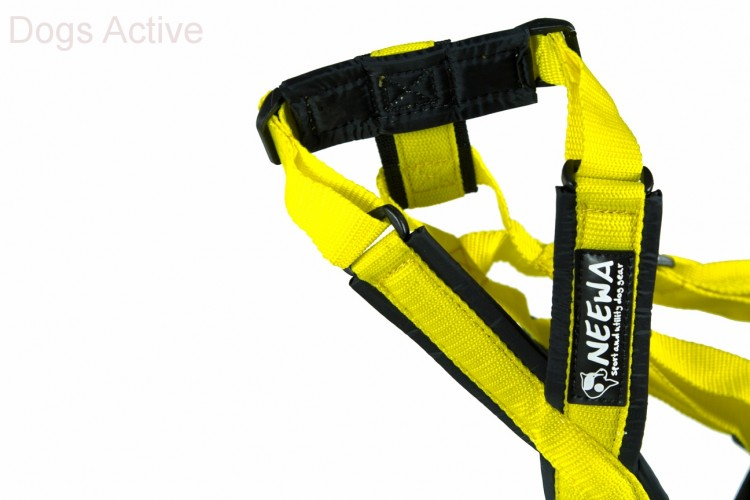 SLED DOG HARNESS